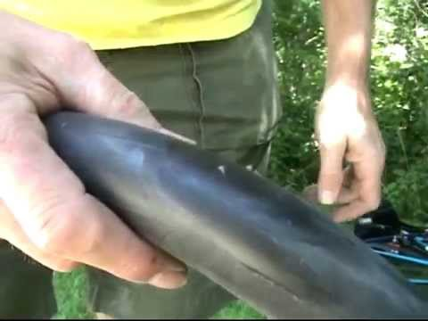 Repairing a punctured bicycle inner tube